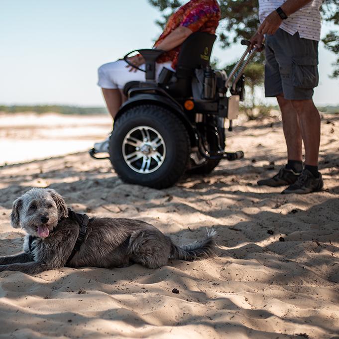 Twizzler Buddy rolstoel hond